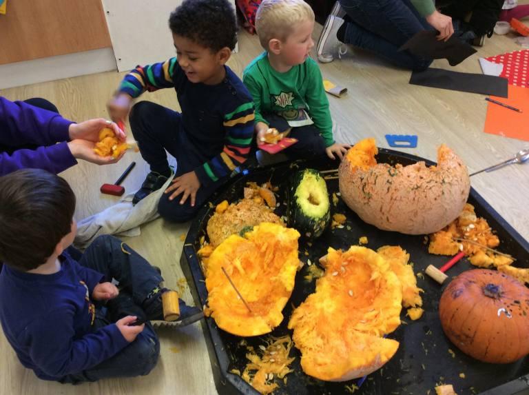 pumpkin explore 5